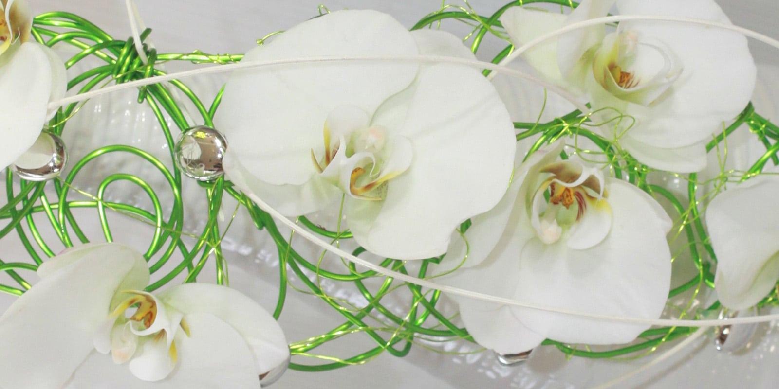 Fleurs blanches bouquet mariee for Bouquet de fleurs vert et blanc