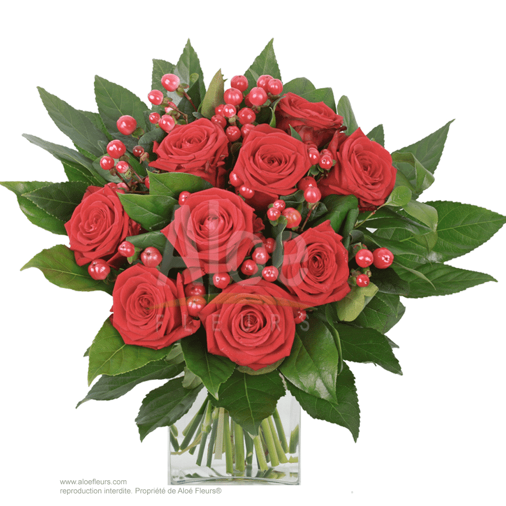 Bouquet-Roses-rouge-&-hypericum