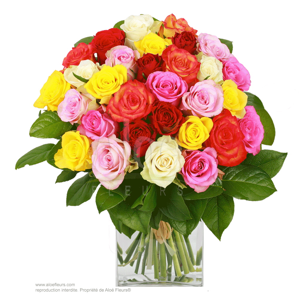 Bouquet-roses-multicolores