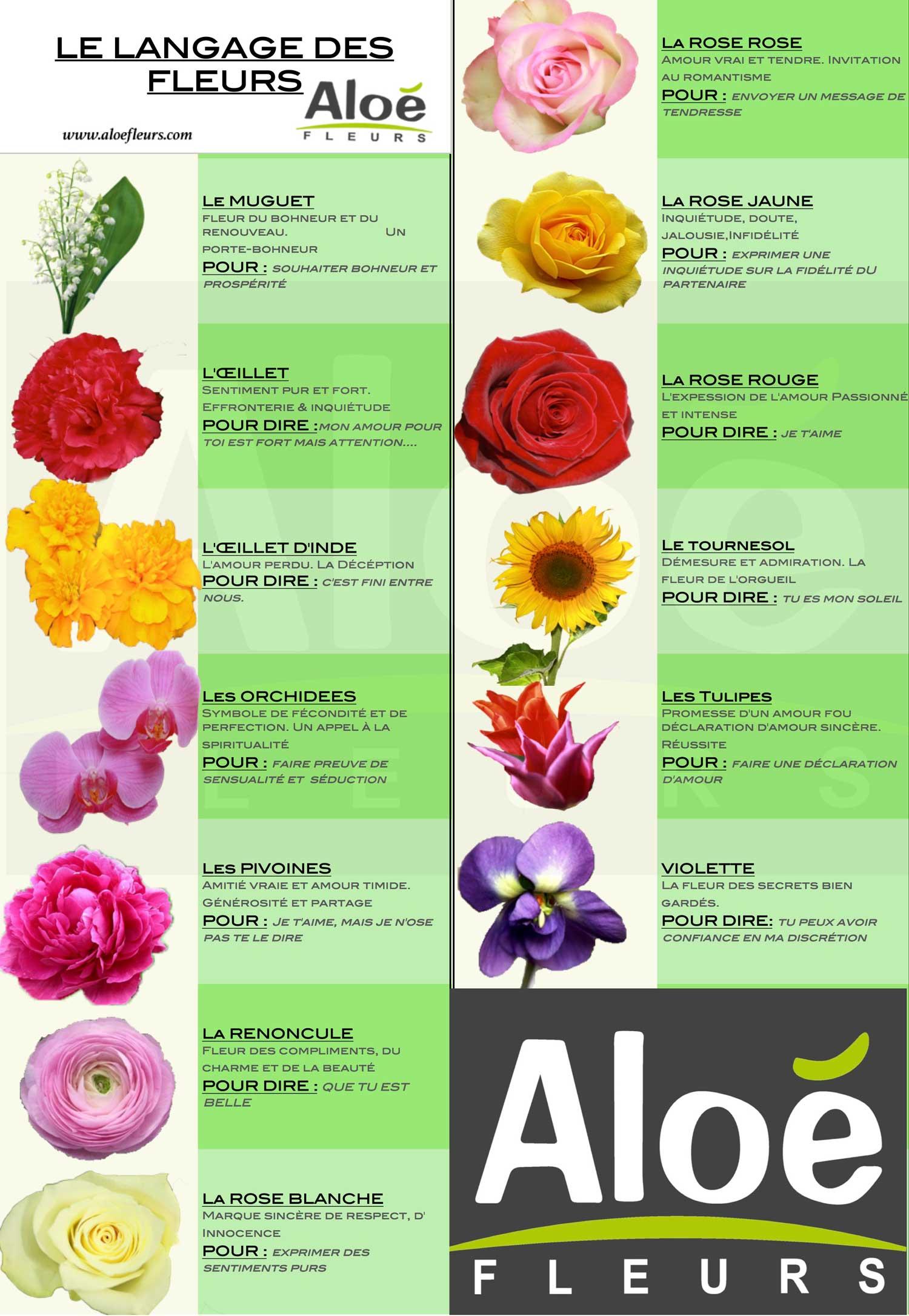 langage-des-fleurs-CP2-1500px